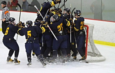 Boys Hockey Headed to the Section Championship