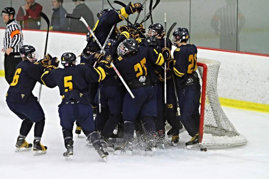 Boys Hockey Headed to the Section Championship