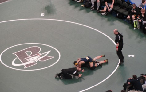Wrestling Team Battles at State Tournament